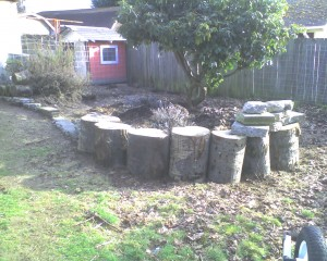 Still recovering from moving the logs, but they sure made the broken concrete seem light...